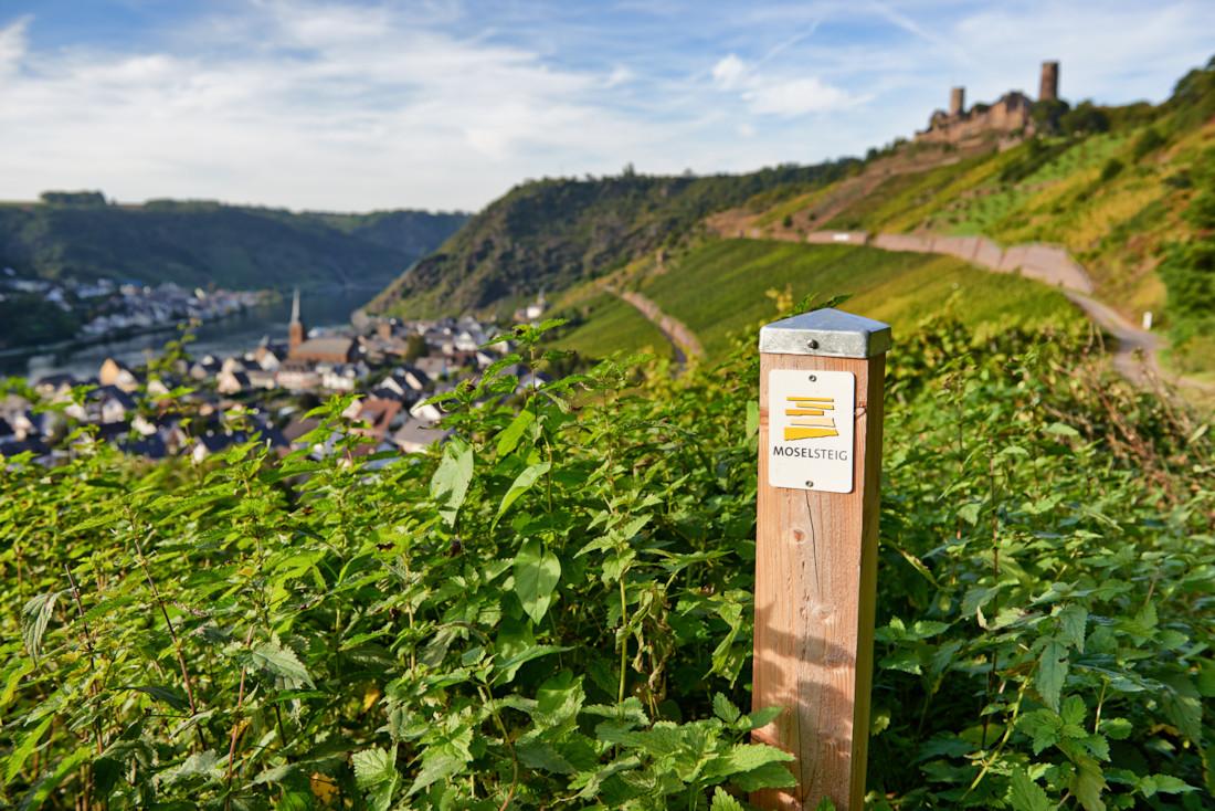 Moselsteig-opastekyltti viiniviljelmien keskellä.