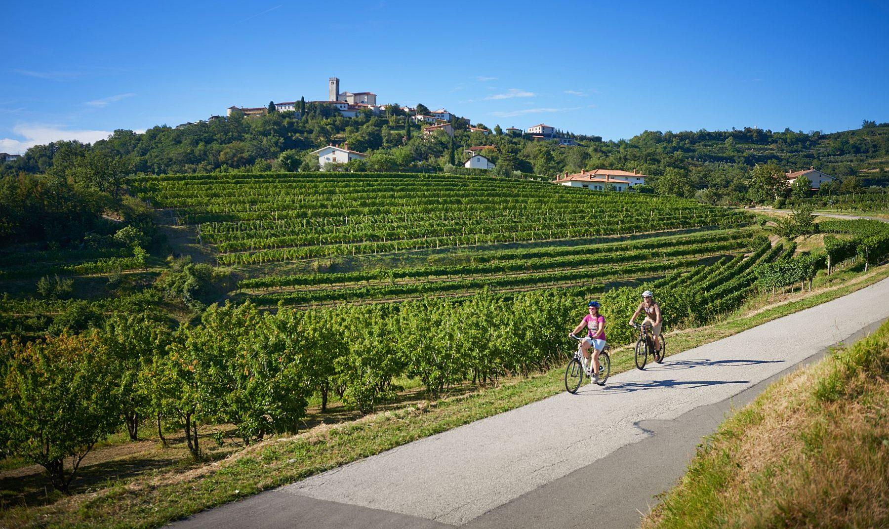 Kaksi pyöräilijää kapealla maalaistiellä. Taustalla viiniviljelmiä ja korkealla kukkulalla sijaitseva kylä.