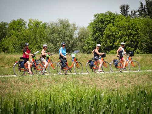 Ryhmä pyöräileviä naisia on pysähtynyt tienpientarelle ja katsoo kameraan.